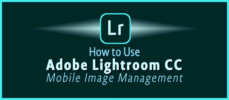 How to Use Adobe Lightroom CC App: Mobile Image Management | dohack